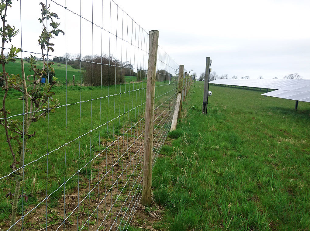 The picture shows the fence and the CCTV of the Pylle Solar farm.